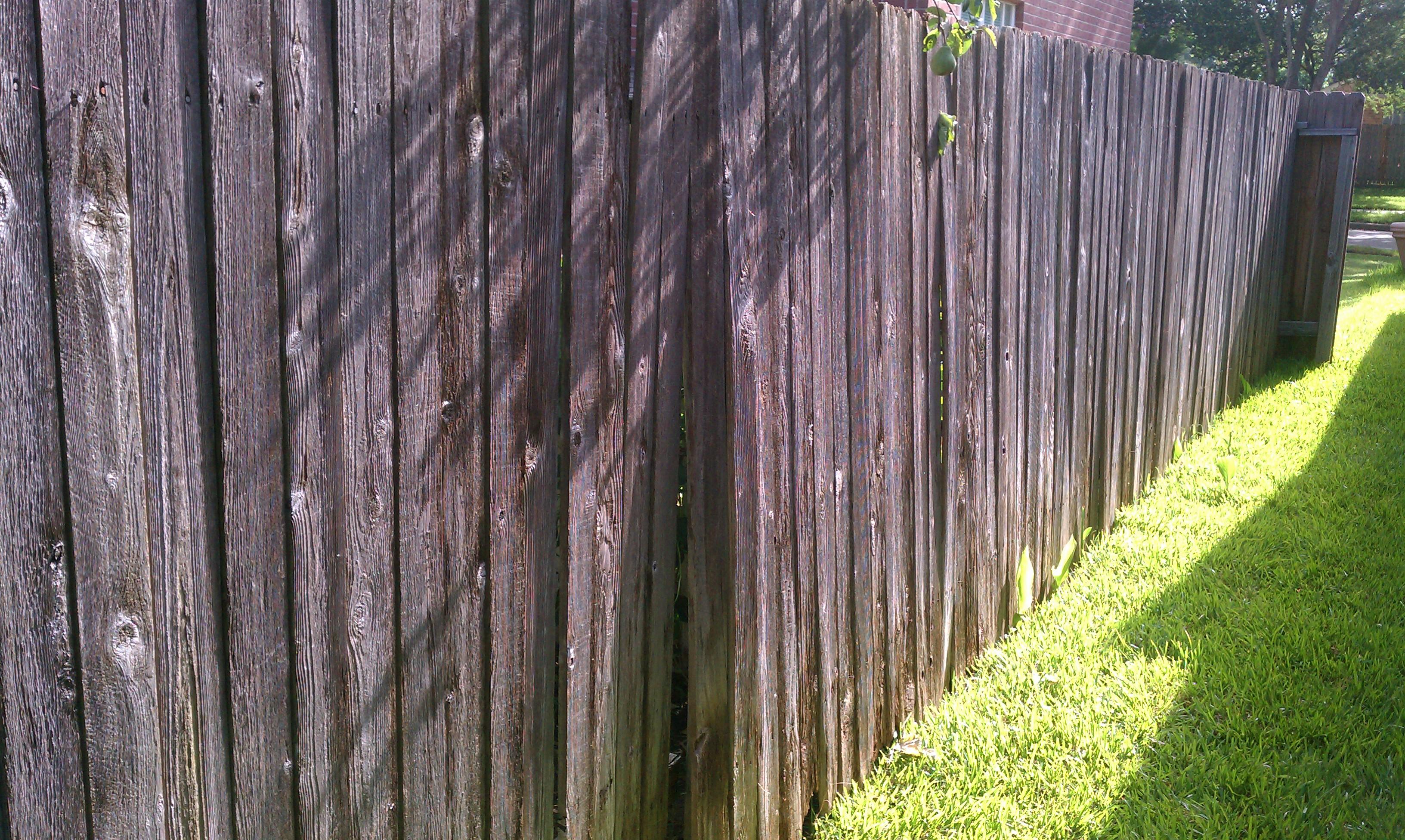 Backyard Project Phase 3 Fence – Sajan Abraham