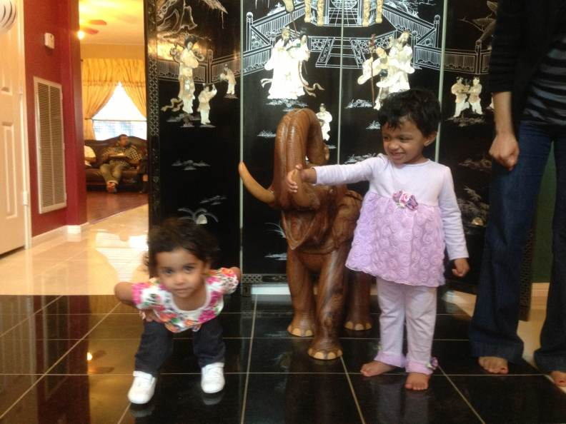Abby, Layla and the elephant!