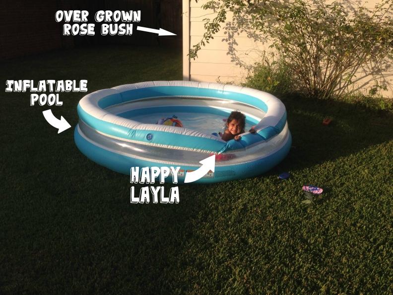 Layla pool