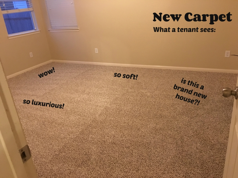 new carpet tenant